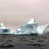 1469 - Penola Strait-Booth Island - 2011-02-22 - P1010806