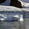 0750 - Cuverville Island - 2011-02-20 - P1060317