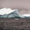 1485 - Penola Strait-Booth Island - 2011-02-22 - P1010825