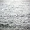 0327 - At Sea - 2011-02-19 - P1050807