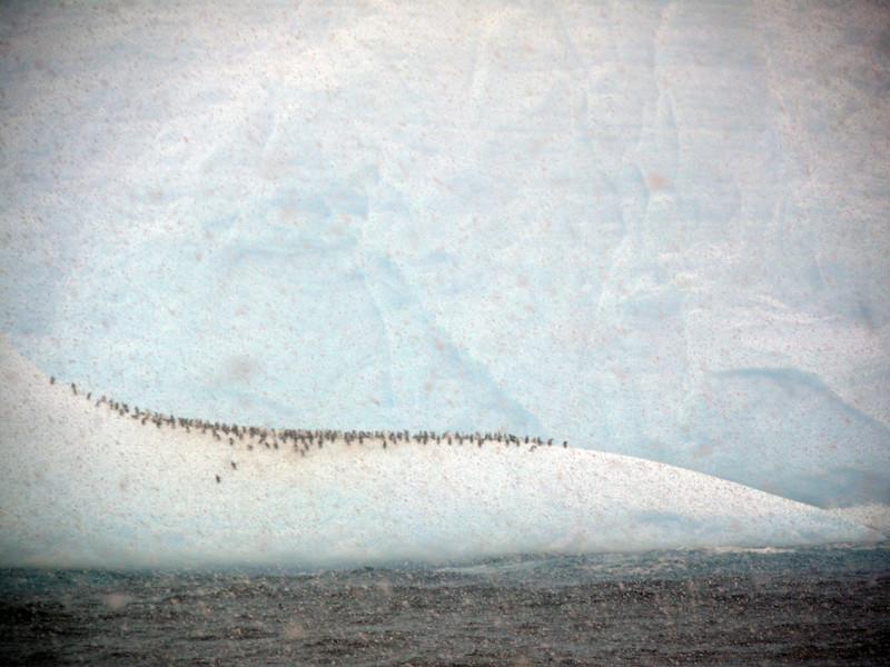 0355 - At Sea - 2011-02-19 - P1050855