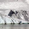 0416 - Neko Harbour - 2011-02-20 - P1050933