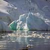 0447 - Neko Harbour - 2011-02-20 - P1050970