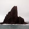 1743 - Elephant Island - 2011-02-24 - P1070535