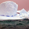 1432 - Penola Strait-Booth Island - 2011-02-22 - P1010758
