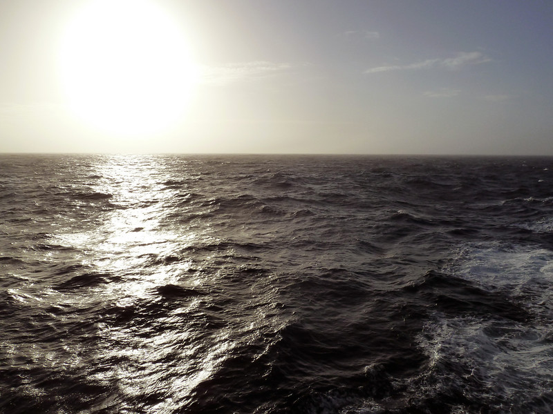 0123 - At Sea (Drake Passage) - 2011-02-18 - P1010563