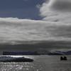 0599 - Cuverville Island - 2011-02-20 - P1060280
