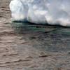 1459 - Penola Strait-Booth Island - 2011-02-22 - P1010790