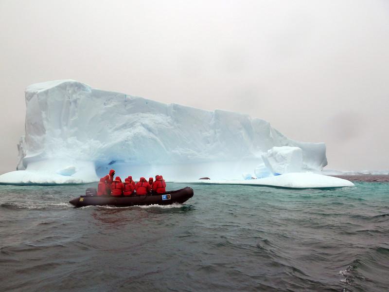 1441 - Penola Strait-Booth Island - 2011-02-22 - P1010767