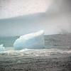 0335 - At Sea - 2011-02-19 - P1050793