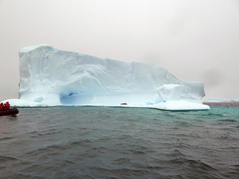 1440 - Penola Strait-Booth Island - 2011-02-22 - P1010766
