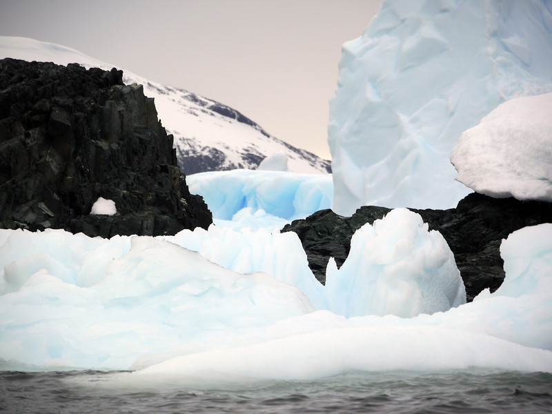 1302 - Detaille Island - 2011-02-21 - P1060993