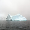 1408 - Penola Strait-Booth Island - 2011-02-22 - P1070184