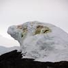 1320 - Detaille Island - 2011-02-21 - P1070038