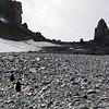 0246 - Half Moon Island - 2011-02-19 - P1050725