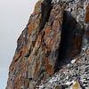 0264 - Half Moon Island - 2011-02-19 - P1050750