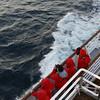 0298 - Half Moon Island - 2011-02-19 - P1050627