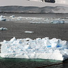 0579 - Neko Harbour - 2011-02-20 - P1060107