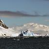 0412 - Neko Harbour - 2011-02-20 - P1050925