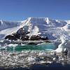0392 - Neko Harbour - 2011-02-20 - P1050916