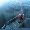 0367 - Neko Harbour - 2011-02-20 - P1010640