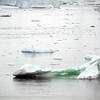 1191 - Crystal Sound - 2011-02-21 - P1060827