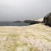 1397 - Petermann Island - 2011-02-22 - P1010716