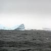 1463 - Penola Strait-Booth Island - 2011-02-22 - P1010797
