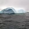 1462 - Penola Strait-Booth Island - 2011-02-22 - P1010796