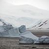 1249 - Detaille Island - 2011-02-21 - P1060930