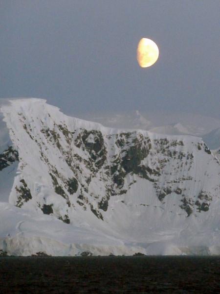 1521 - Gerlache Strait - 2011-02-22 - P1010871