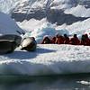 0396 - Neko Harbour - 2011-02-20 - P1050921