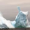 1359 - Detaille Island - 2011-02-21 - P1070107