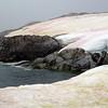 1398 - Petermann Island - 2011-02-22 - P1010717