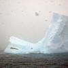 0352 - At Sea - 2011-02-19 - P1050848