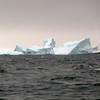1457 - Penola Strait-Booth Island - 2011-02-22 - P1010788