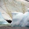 1364 - Detaille Island - 2011-02-21 - P1070118