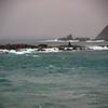 1745 - Elephant Island - 2011-02-24 - P1070541