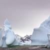 1372 - Detaille Island - 2011-02-21 - P1070130