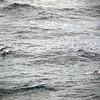 0316 - At Sea - 2011-02-19 - P1050813
