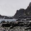 0206 - Half Moon Island - 2011-02-19 - P1010632