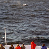 3750 - At Sea - 2011-03-05 - P1100096