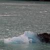 1784 - Drygalski Fjord - 2011-02-26 - P1070611