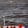 3746 - At Sea - 2011-03-05 - P1100092