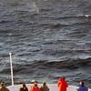 3748 - At Sea - 2011-03-05 - P1100094