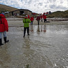 """Another """"wet"""" landing at New Island, Falkland Islands"""