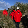 Searching for magellanic penguins in the tussock grass on Carcass Island, Falkland Islands