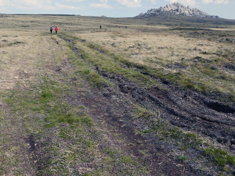 Long hike to Mount William, Falkland Islands