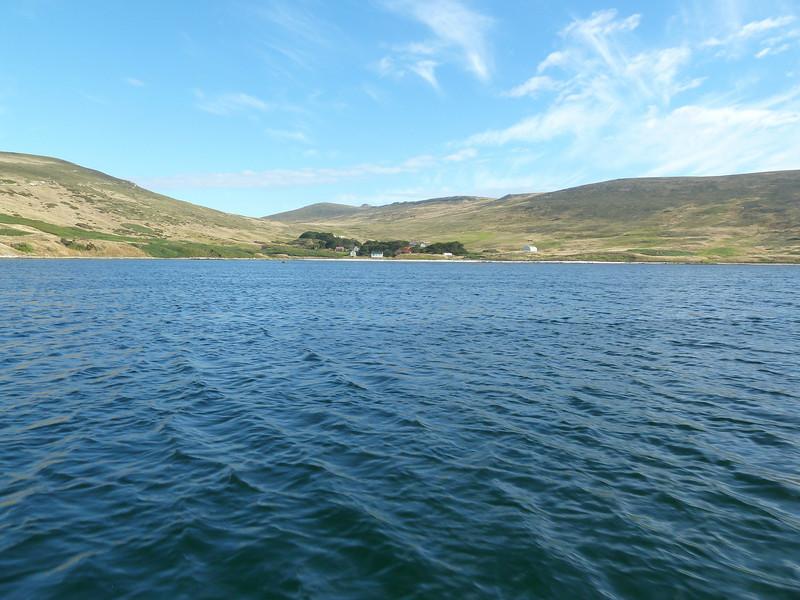3913 - Carcass Island - 2011-03-07 - P1020327