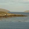 4385 - New Island - 2011-03-07 - P1020499